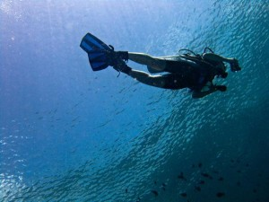 Scuba Underwater Travel Insurance Quote Checklist