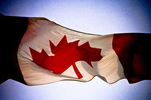 Canadian Flag By Alex Indigo